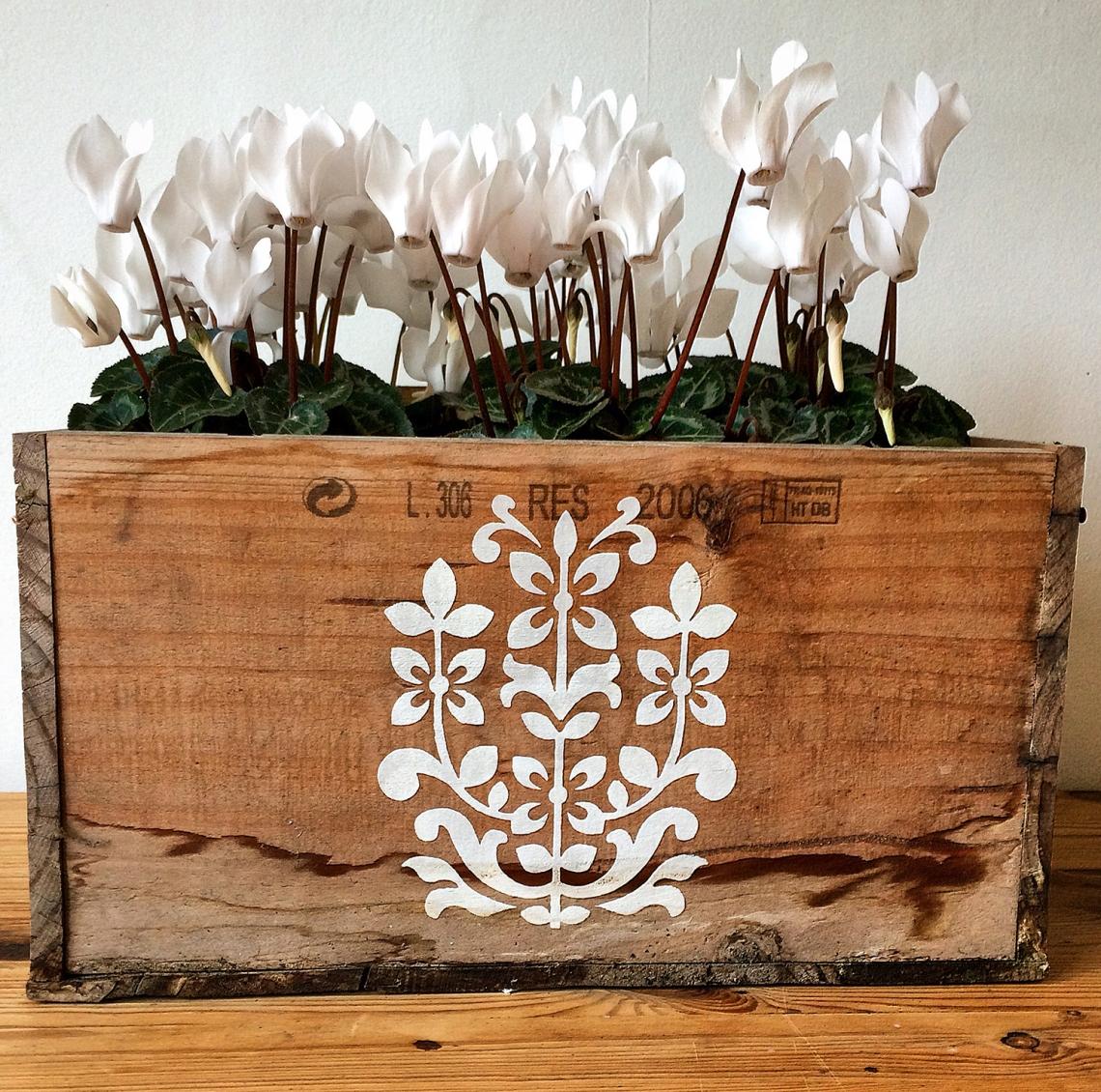 jaipur-stencil-windowbox